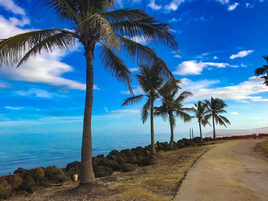 Things to do in Miami With Kids: Is Miami a Family- Friendly Vacation Destination?