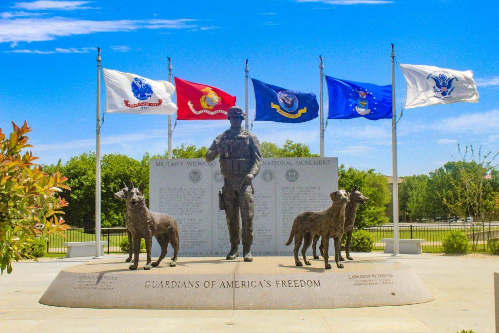 7 Awesome Ways to Show Your Appreciation During National Military Appreciation Month graphic