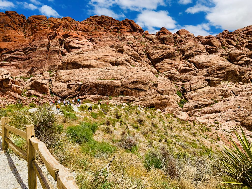 red rock canyon hiking