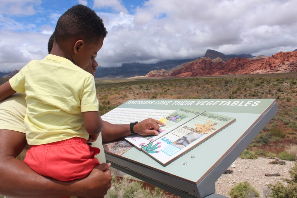 scenic drives near Las Vegas: red rock canyon outdoor exhibits