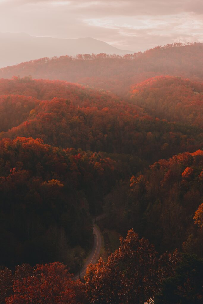 best places to see fall colors Tennessee